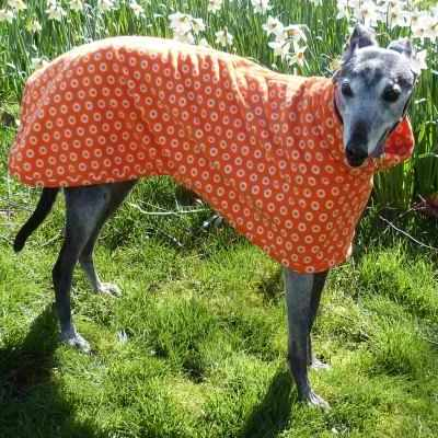 Euro Greyhound Coats Fleece In Cosmic Orange