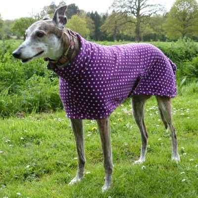 australia Greyhound Coats Fleece In Purple Spot
