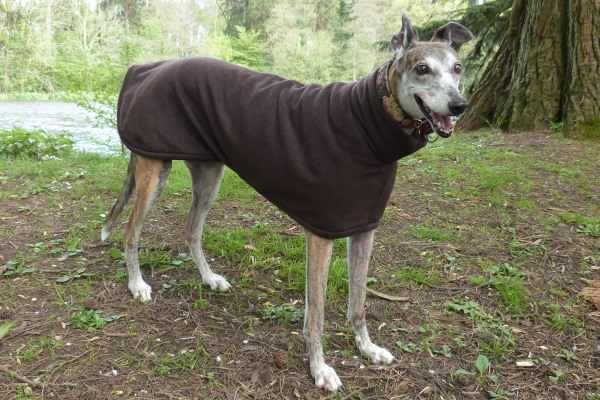 Fleece coat for greyhounds lurchers and whippets in Dark Chocolate Brown
