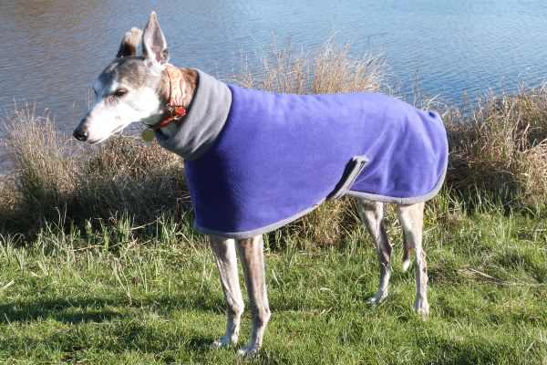 greyhound fleece coat in purple with charcoal