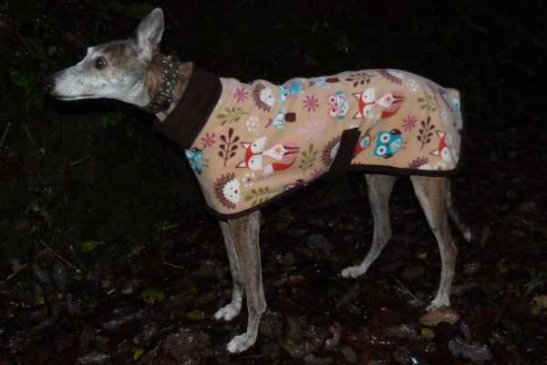 fleece coat in woodland creatures with brown trim