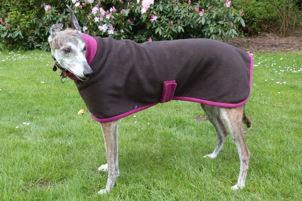 Greyhound Fleece Coat in Chocolate and Cherry from Milgi Coats