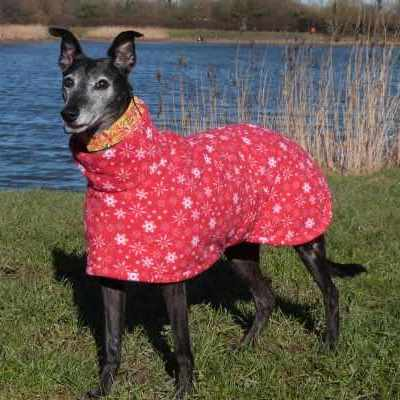 new zealand Greyhound Coats Fleece In Snowflakes